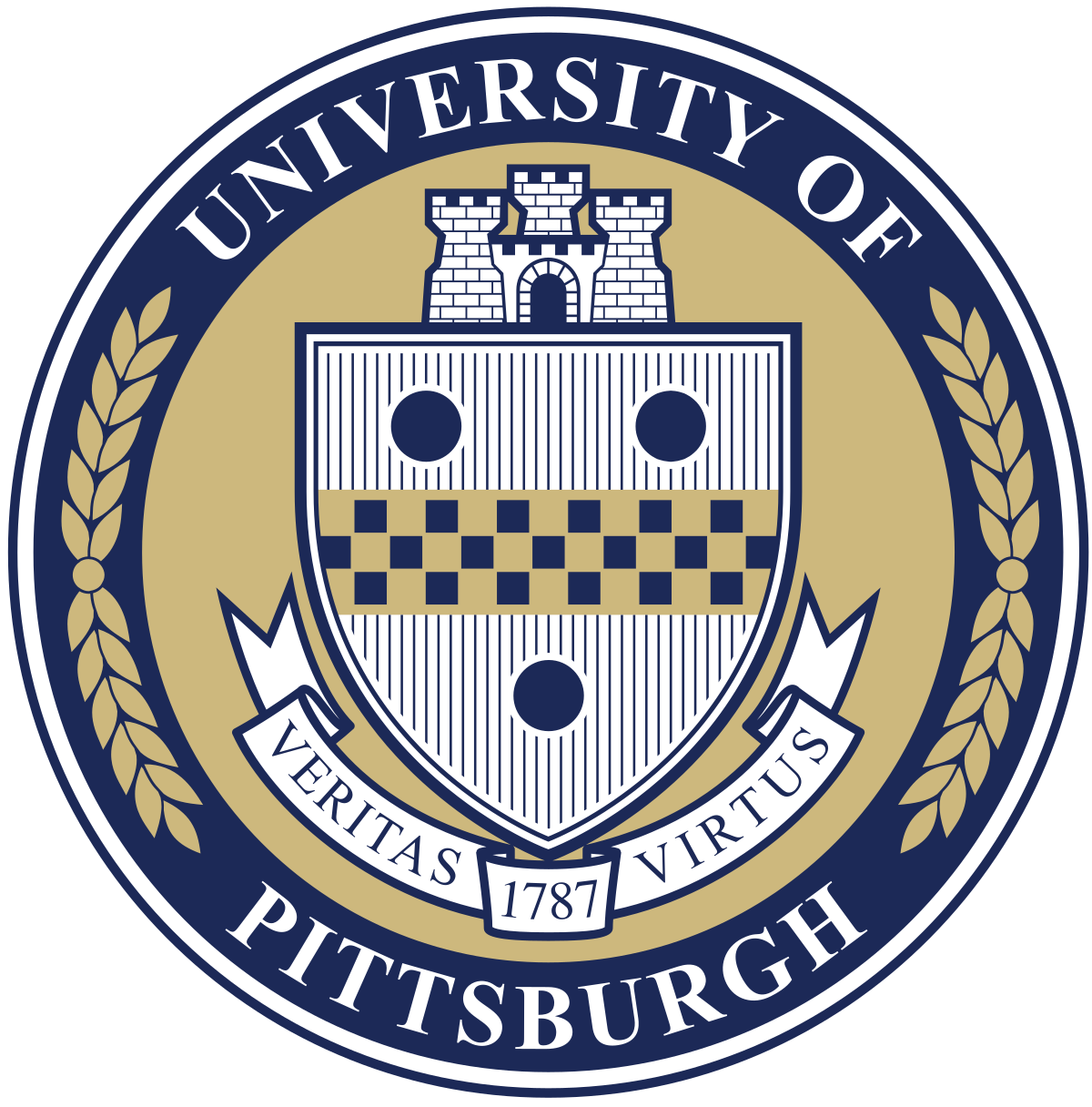 University of Pittsburgh School of Medicine Secondary Essay