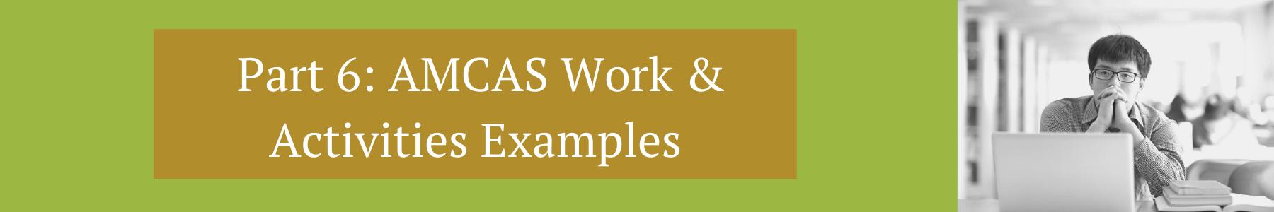 AMCAS Work Activities Examples