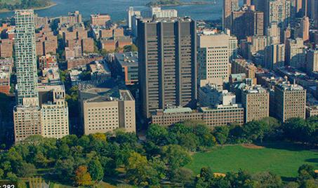 Icahn School of Medicine at Mount Sinai New York
