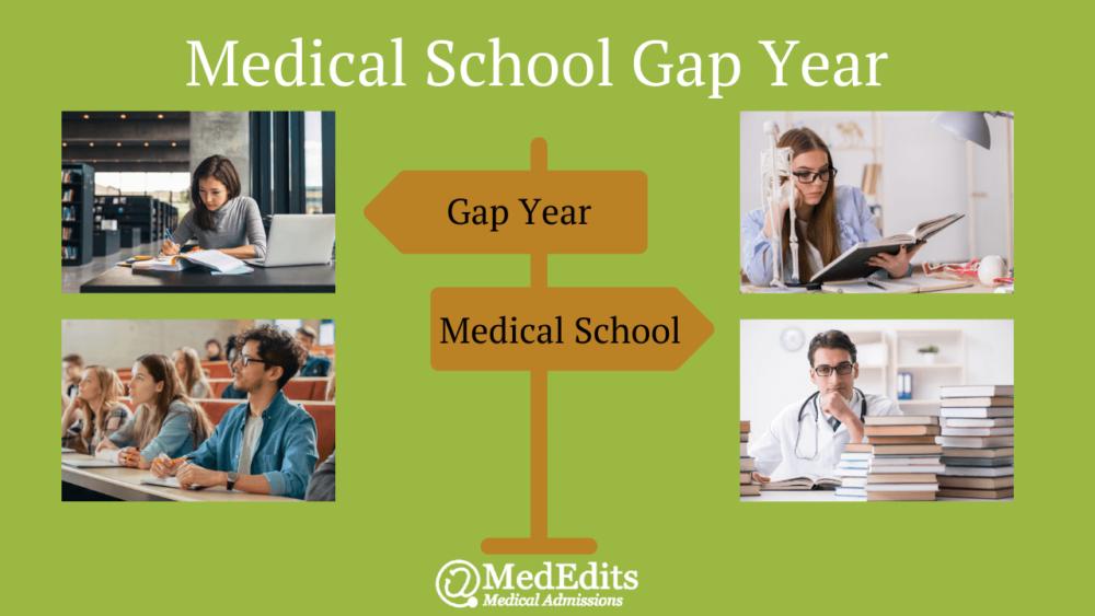 Medical School Gap Year